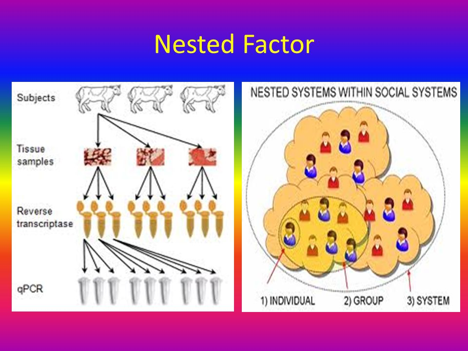 Nested Factor