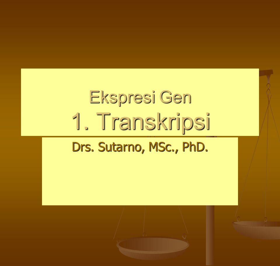 Ekspresi Gen 1. Transkripsi