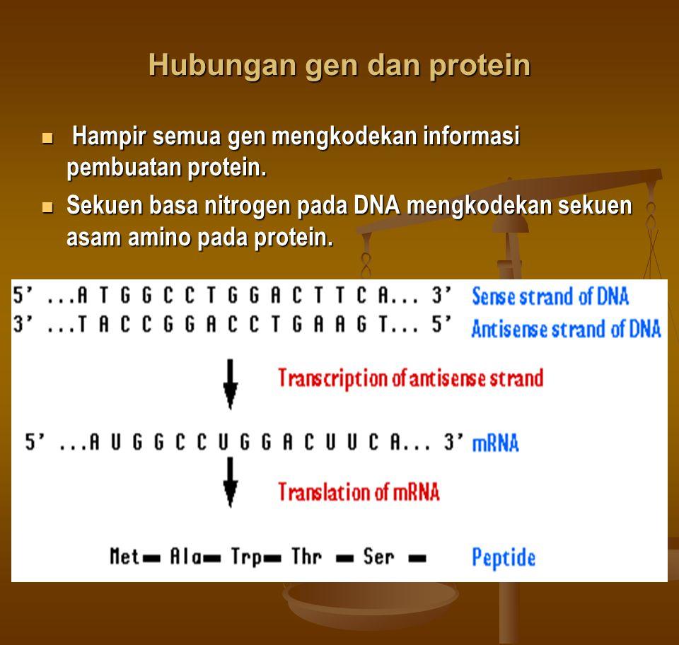 Hubungan gen dan protein
