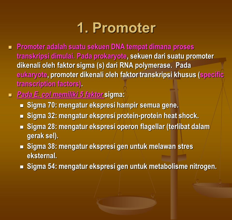 1. Promoter