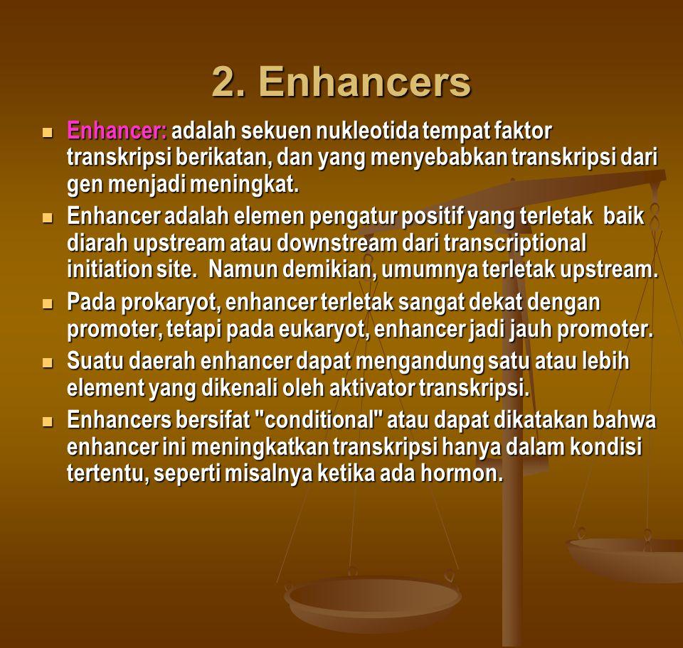 2. Enhancers Enhancer: adalah sekuen nukleotida tempat faktor transkripsi berikatan, dan yang menyebabkan transkripsi dari gen menjadi meningkat.