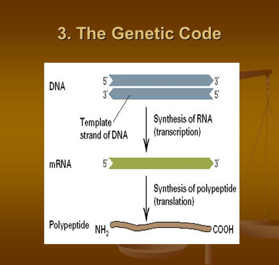 3. The Genetic Code