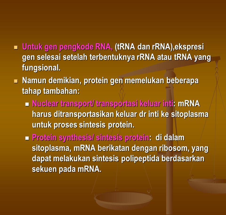 Untuk gen pengkode RNA, (tRNA dan rRNA),ekspresi gen selesai setelah terbentuknya rRNA atau tRNA yang fungsional.