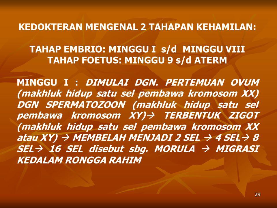 KEDOKTERAN MENGENAL 2 TAHAPAN KEHAMILAN: