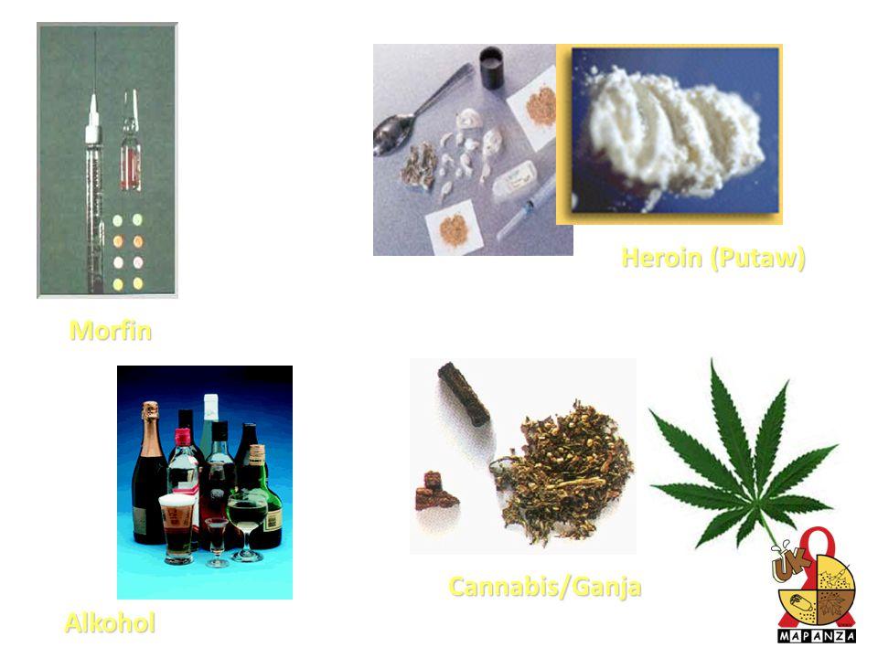 Heroin (Putaw) Morfin Cannabis/Ganja Alkohol