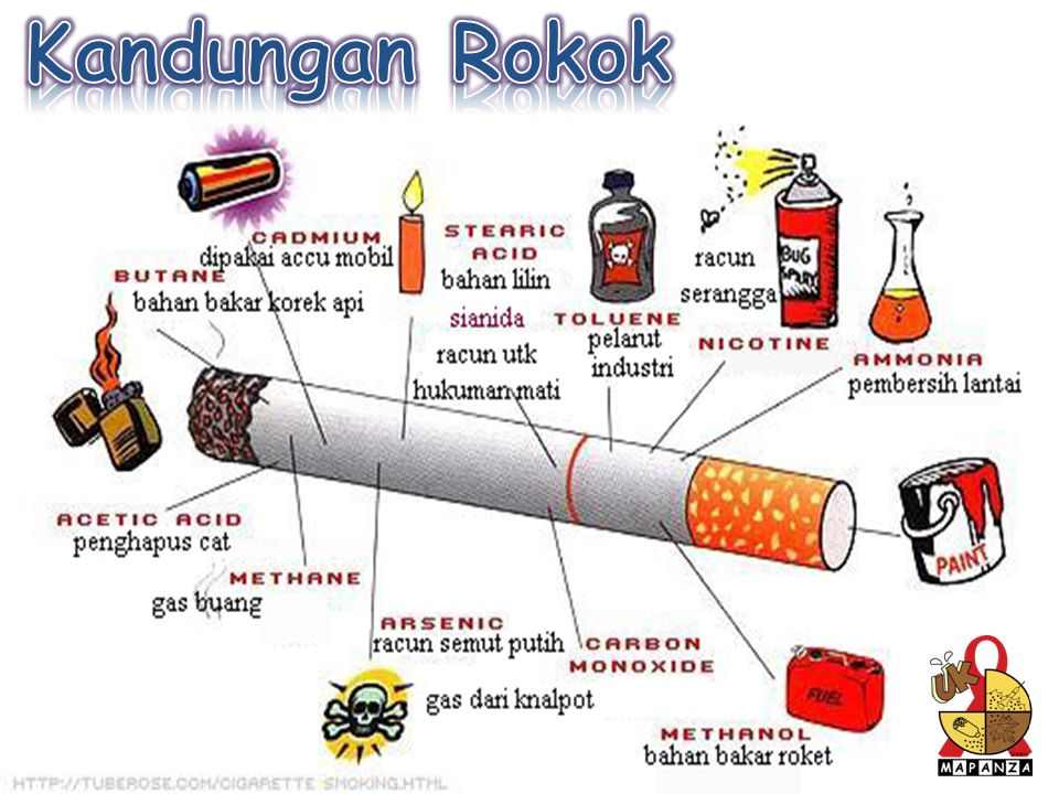 Kandungan Rokok uk_mapanza Unair