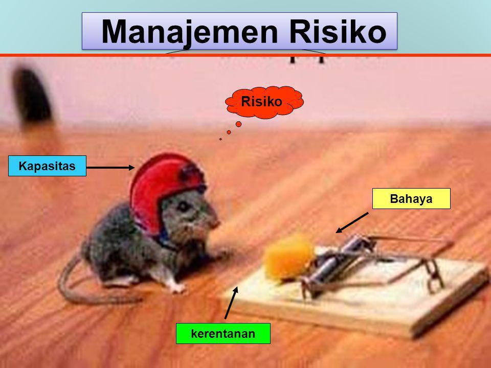 Manajemen Risiko Risiko Kapasitas Bahaya kerentanan 6