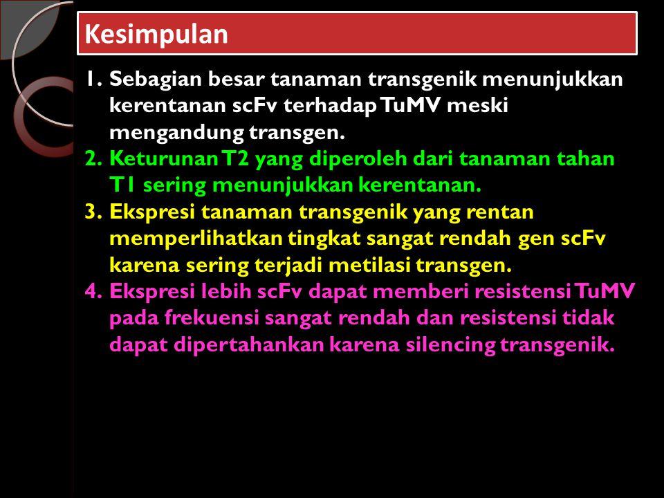Kesimpulan Sebagian besar tanaman transgenik menunjukkan kerentanan scFv terhadap TuMV meski mengandung transgen.
