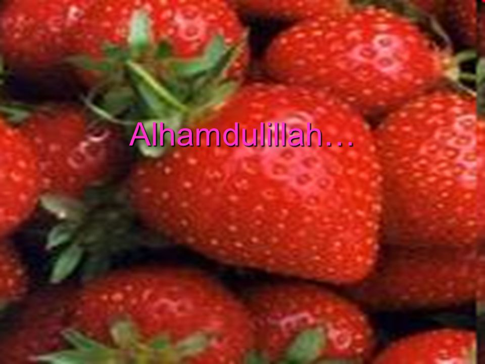 Alhamdulillah…