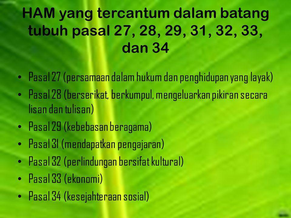 HAM yang tercantum dalam batang tubuh pasal 27, 28, 29, 31, 32, 33, dan 34