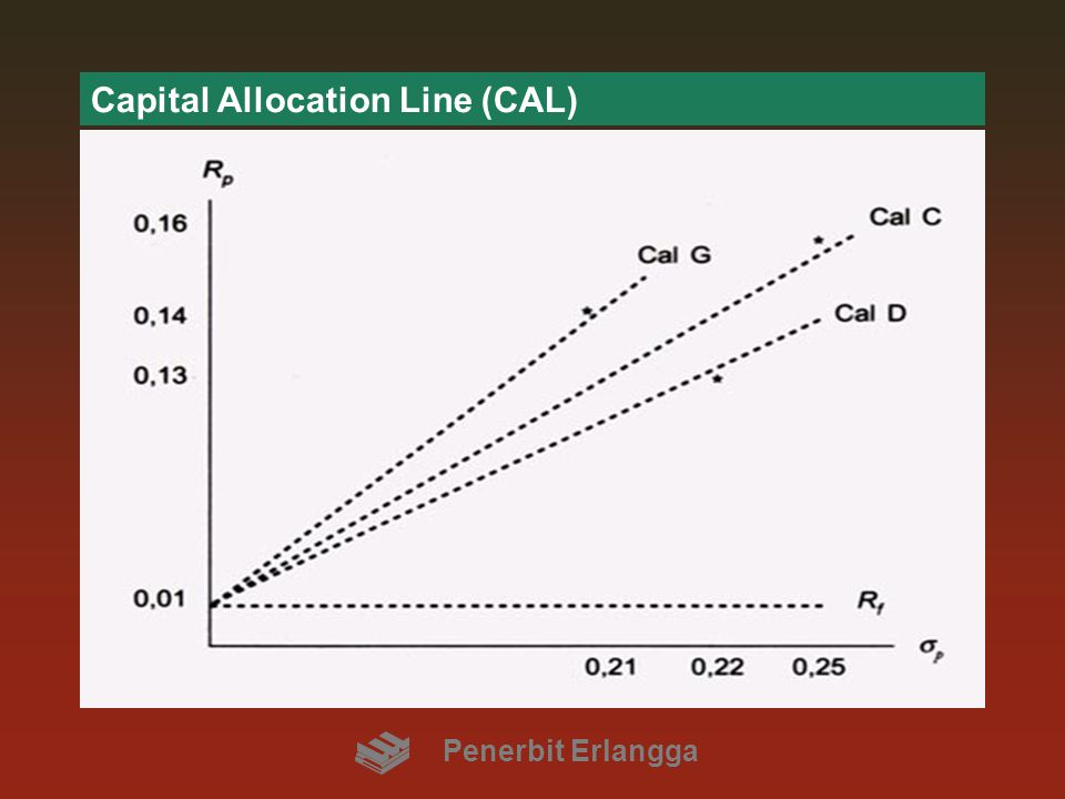 Capital Allocation Line (CAL)