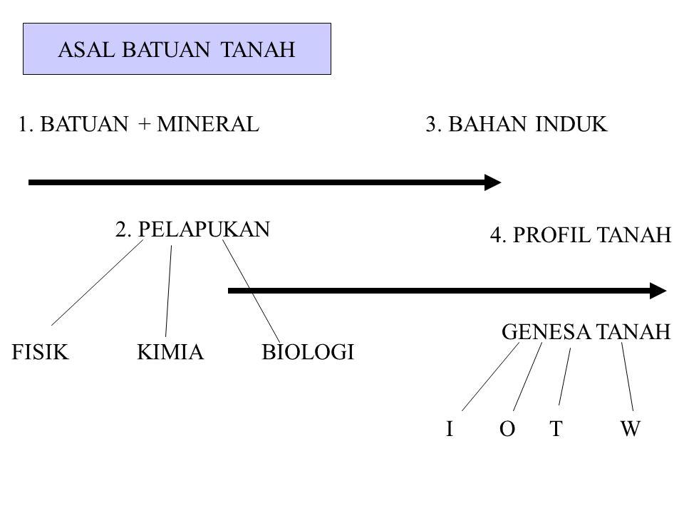 ASAL BATUAN TANAH 1. BATUAN + MINERAL 3. BAHAN INDUK. 2. PELAPUKAN. 4. PROFIL TANAH.
