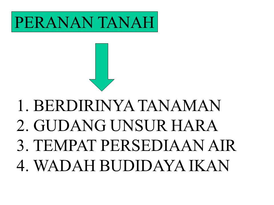 PERANAN TANAH 1. BERDIRINYA TANAMAN. 2. GUDANG UNSUR HARA.