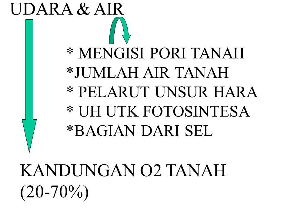 UDARA & AIR KANDUNGAN O2 TANAH (20-70%) * MENGISI PORI TANAH