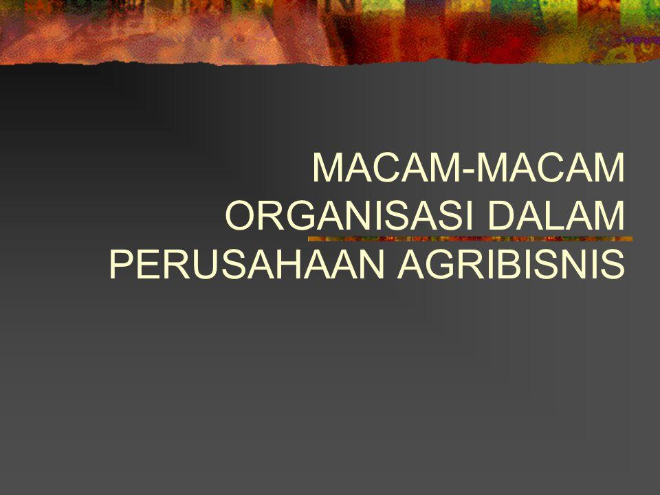 MACAM-MACAM ORGANISASI DALAM PERUSAHAAN AGRIBISNIS