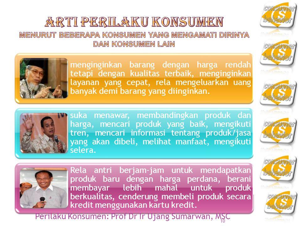 Arti Perilaku Konsumen menurut beberapa konsumen yang mengamati dirinya dan konsumen lain
