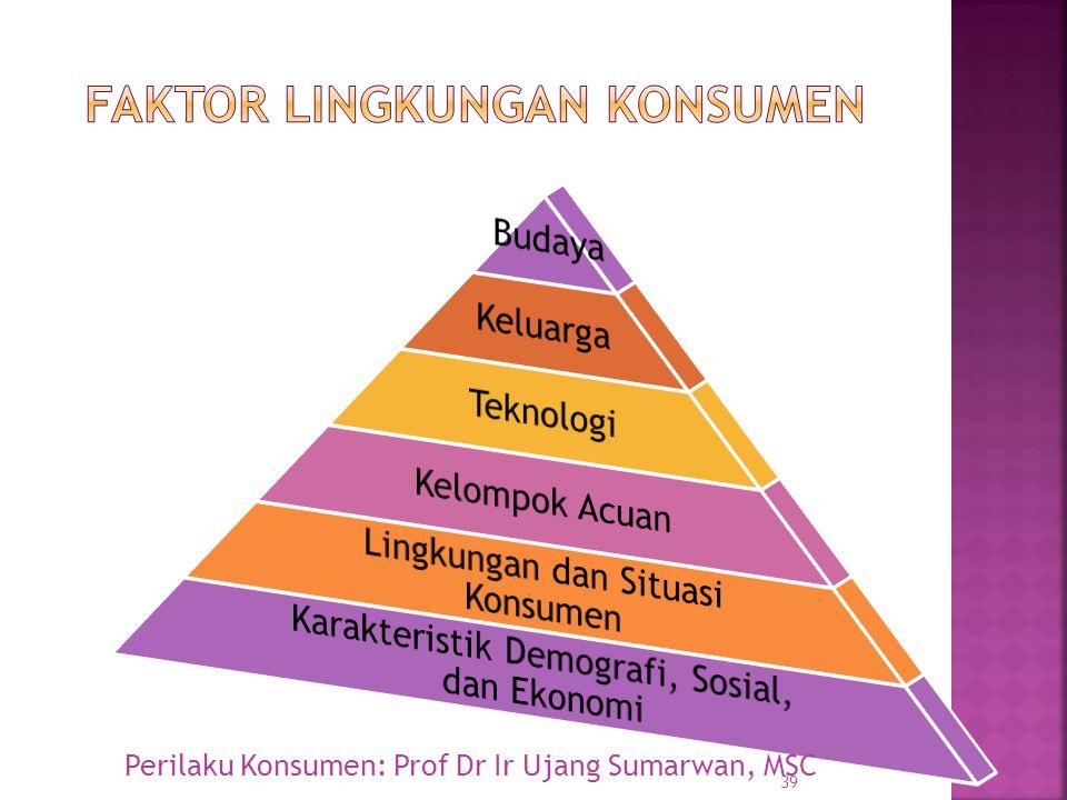 Faktor lingkungan konsumen