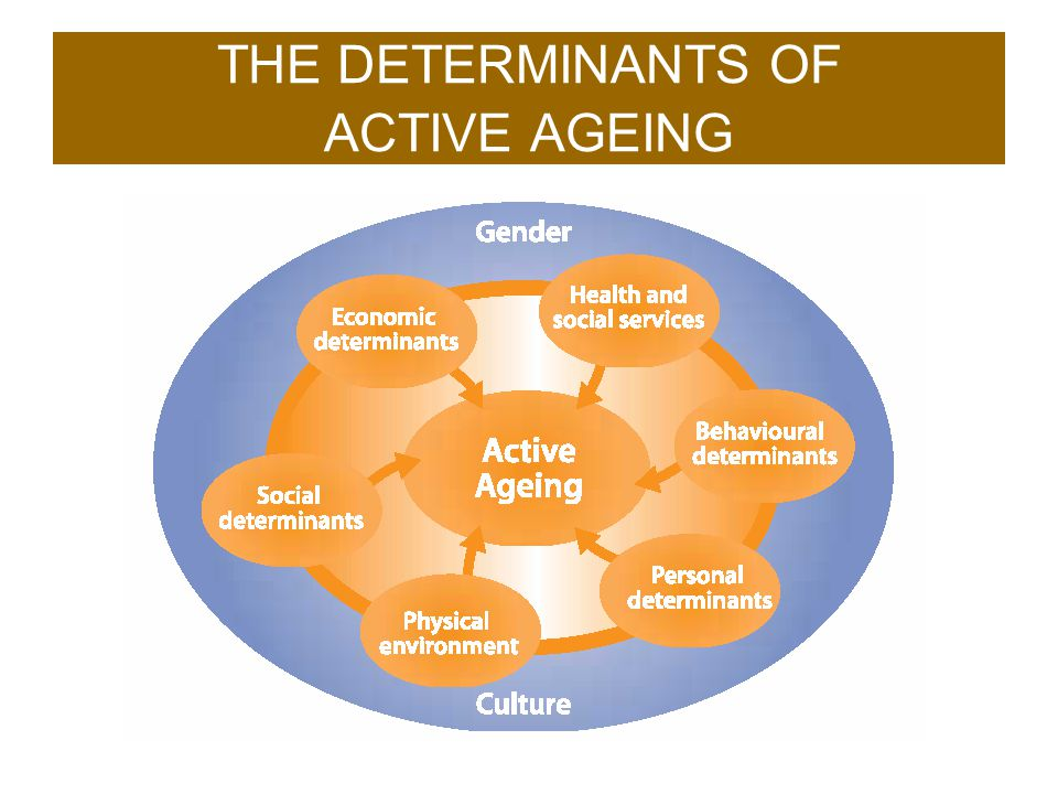 THE DETERMINANTS OF ACTIVE AGEING