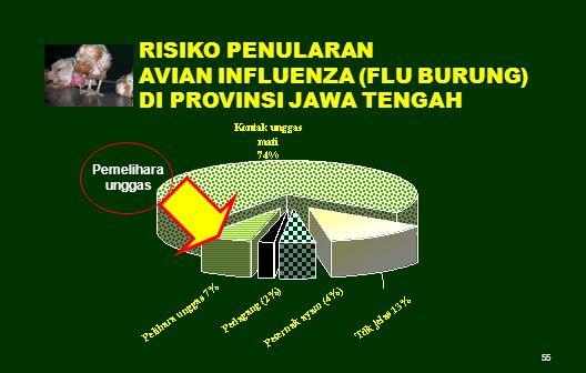 AVIAN INFLUENZA (FLU BURUNG) DI PROVINSI JAWA TENGAH