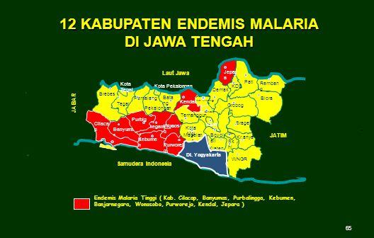 12 KABUPATEN ENDEMIS MALARIA DI JAWA TENGAH