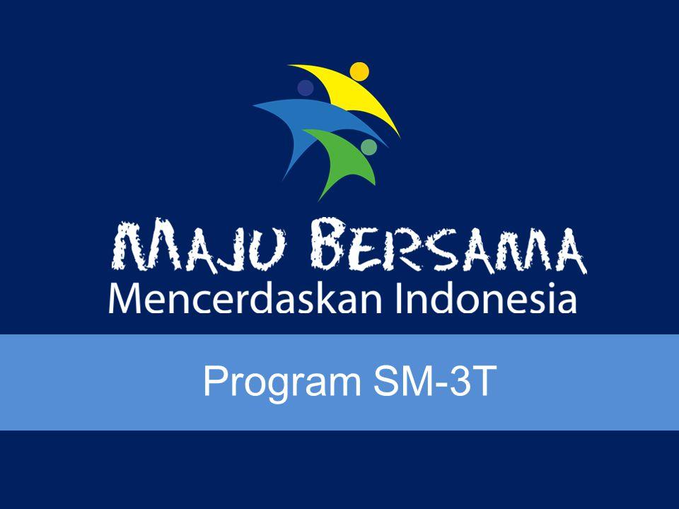 Program SM-3T