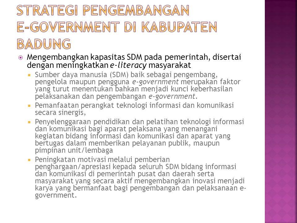 Strategi pengembangan e-government di kabupaten badung