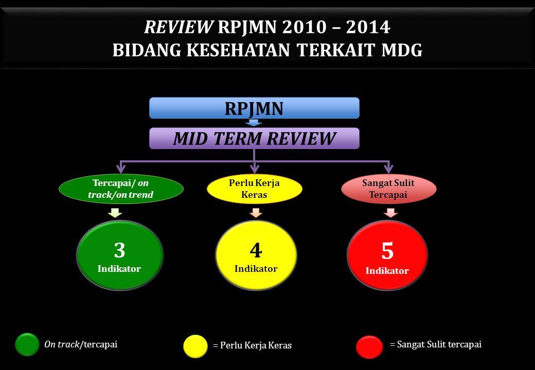 REVIEW RPJMN 2010 – 2014 BIDANG KESEHATAN TERKAIT MDG