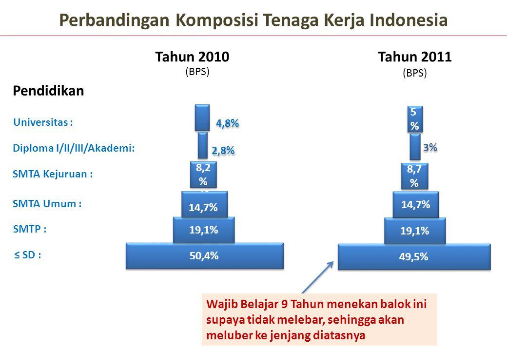 Perbandingan Komposisi Tenaga Kerja Indonesia