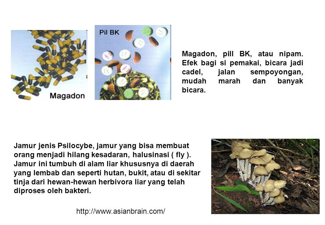Magadon, pill BK, atau nipam
