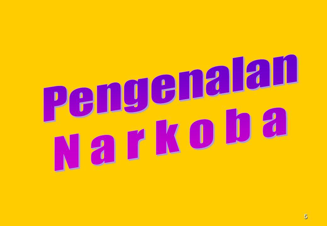 Pengenalan N a r k o b a