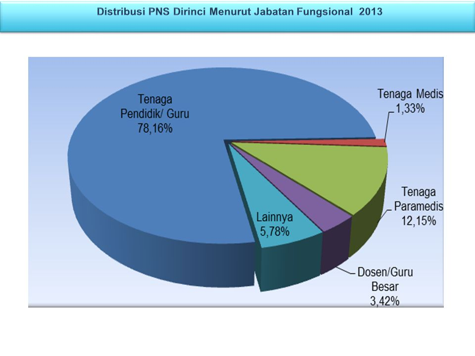 Distribusi PNS Dirinci Menurut Jabatan Fungsional 2013
