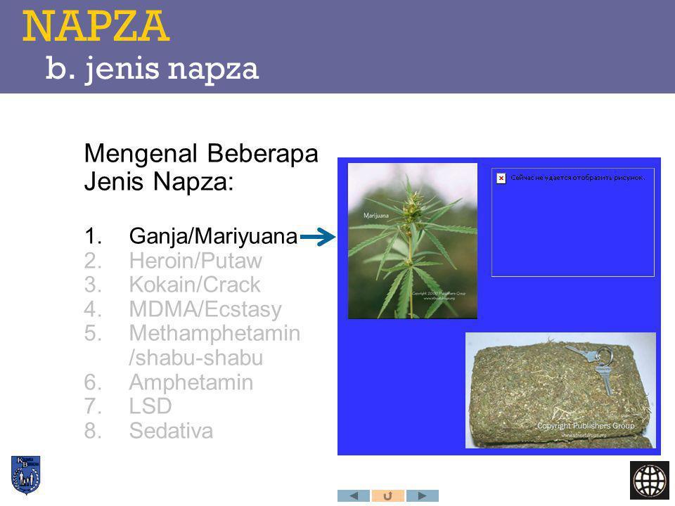 NAPZA b. jenis napza Mengenal Beberapa Jenis Napza: Ganja/Mariyuana