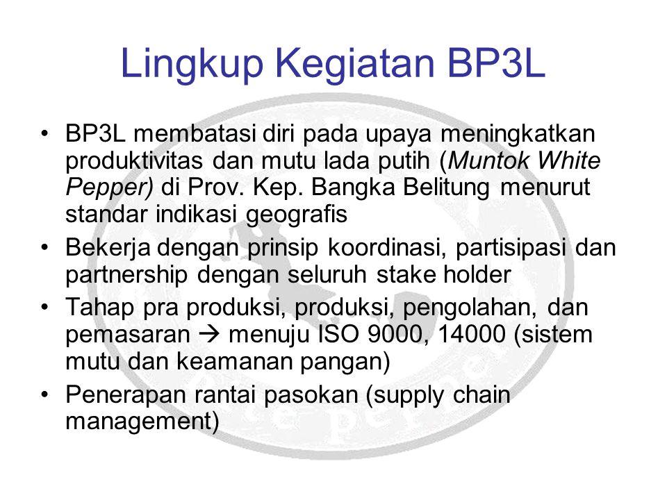 Lingkup Kegiatan BP3L
