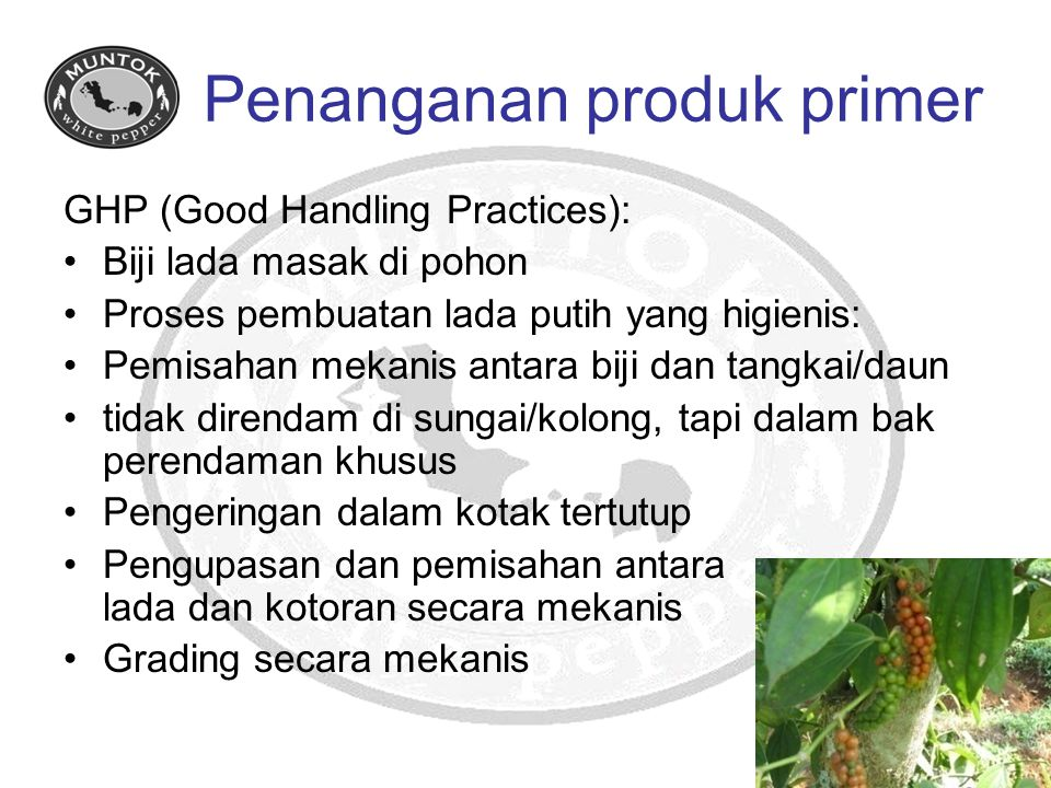 Penanganan produk primer