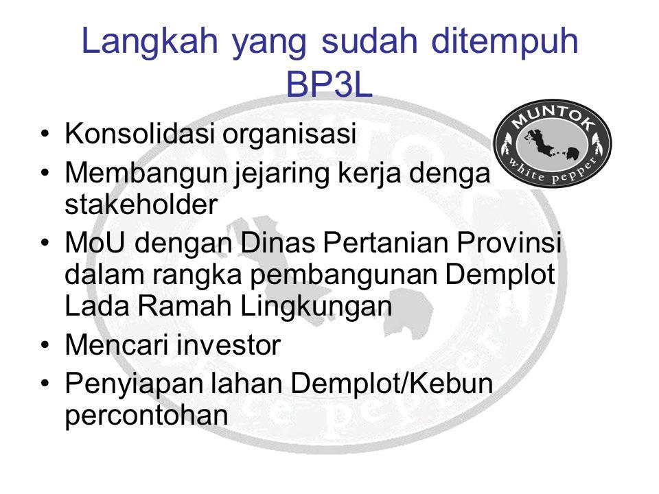 Langkah yang sudah ditempuh BP3L