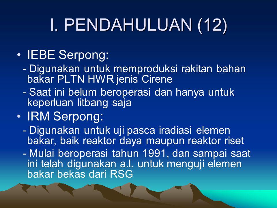 I. PENDAHULUAN (12) IEBE Serpong: IRM Serpong: