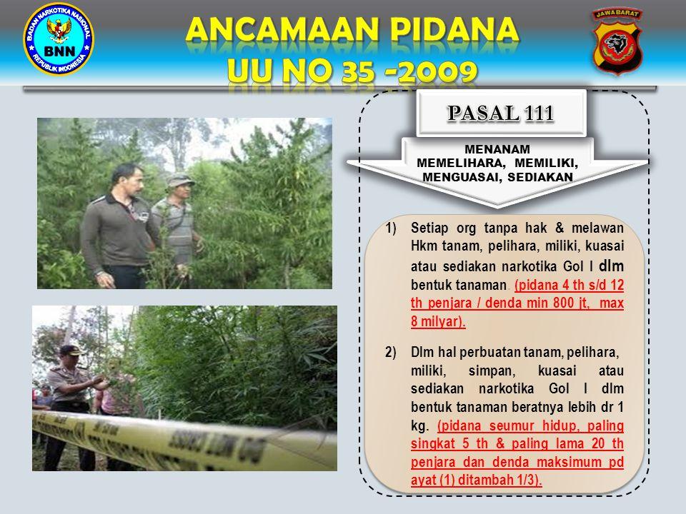 ANCAMAAN PIDANA UU NO 35 -2009 PASAL 111