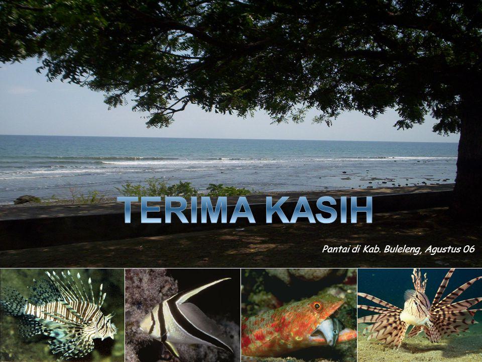 TERIMA KASIH Pantai di Kab. Buleleng, Agustus 06