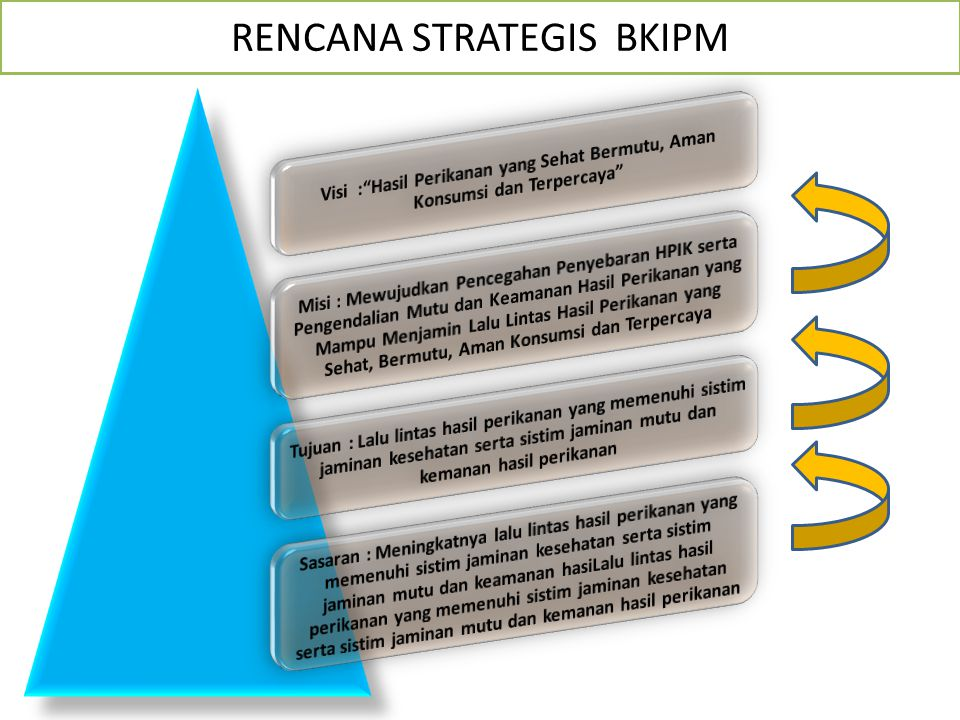 RENCANA STRATEGIS BKIPM