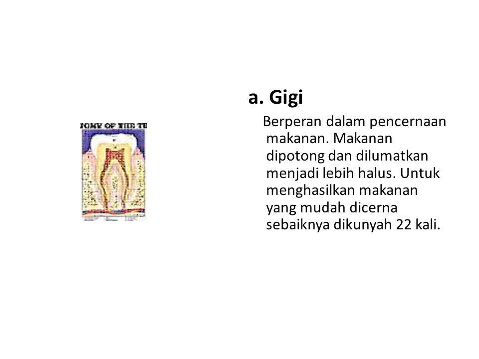 a. Gigi