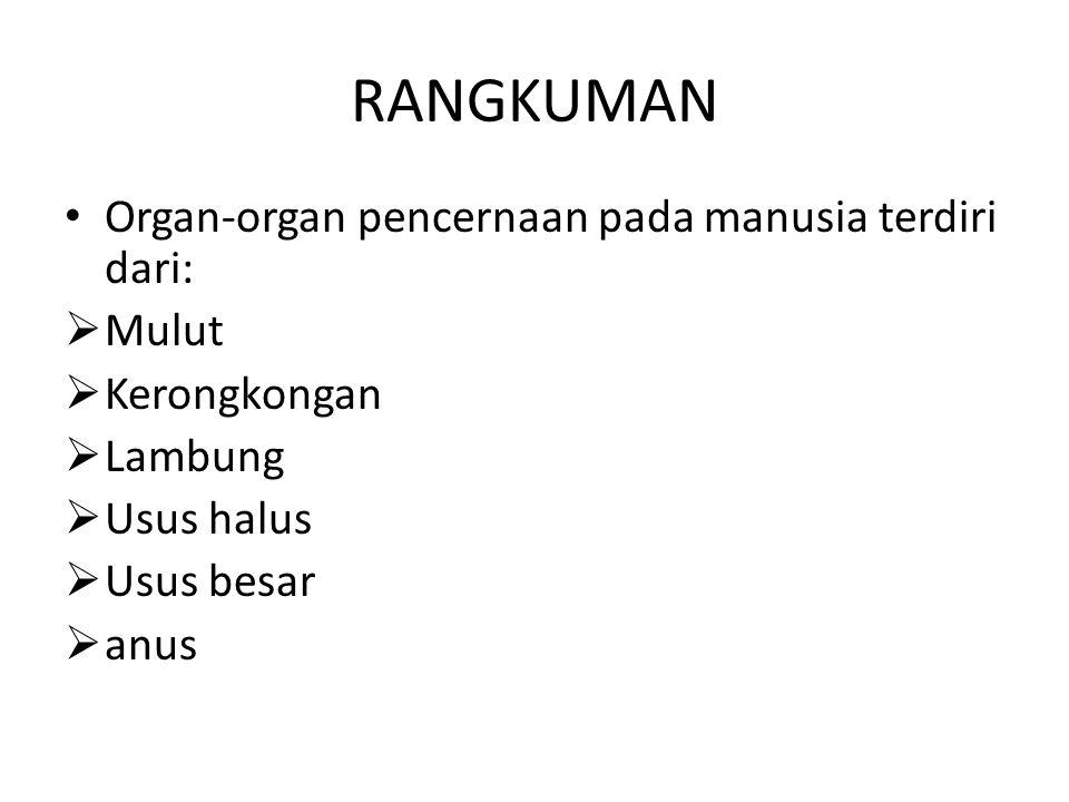 RANGKUMAN Organ-organ pencernaan pada manusia terdiri dari: Mulut