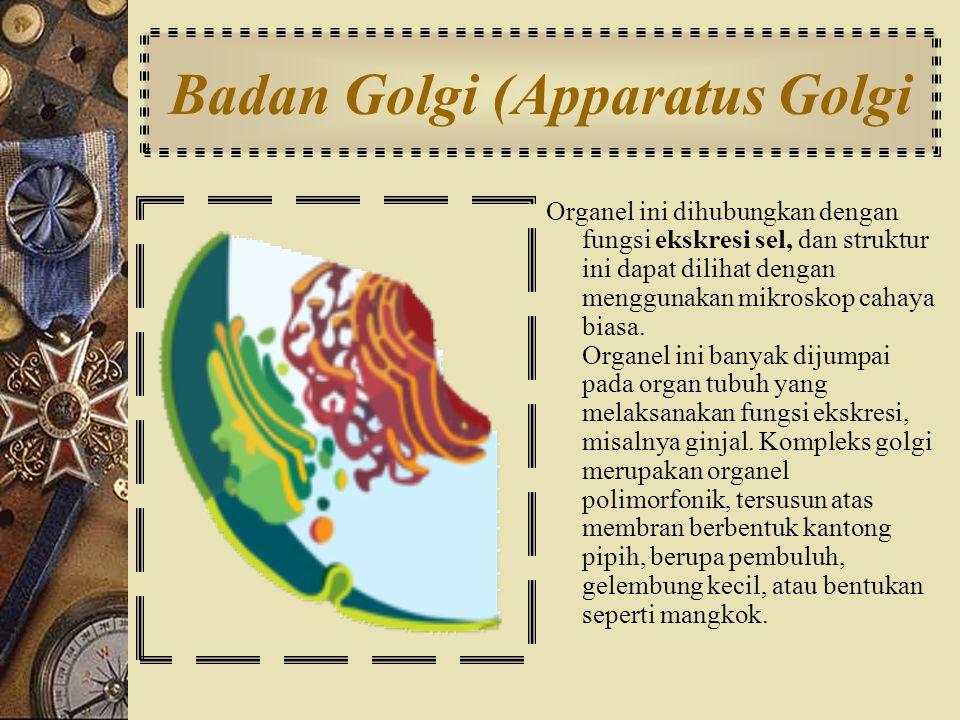 Badan Golgi (Apparatus Golgi