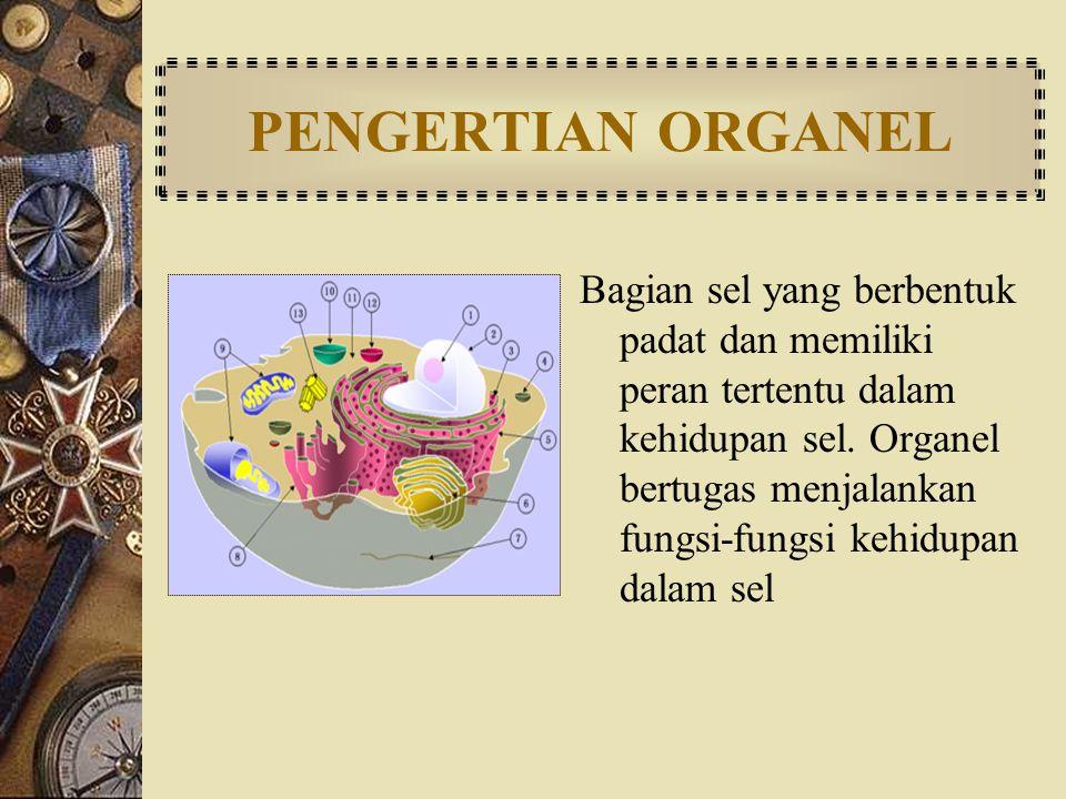 PENGERTIAN ORGANEL