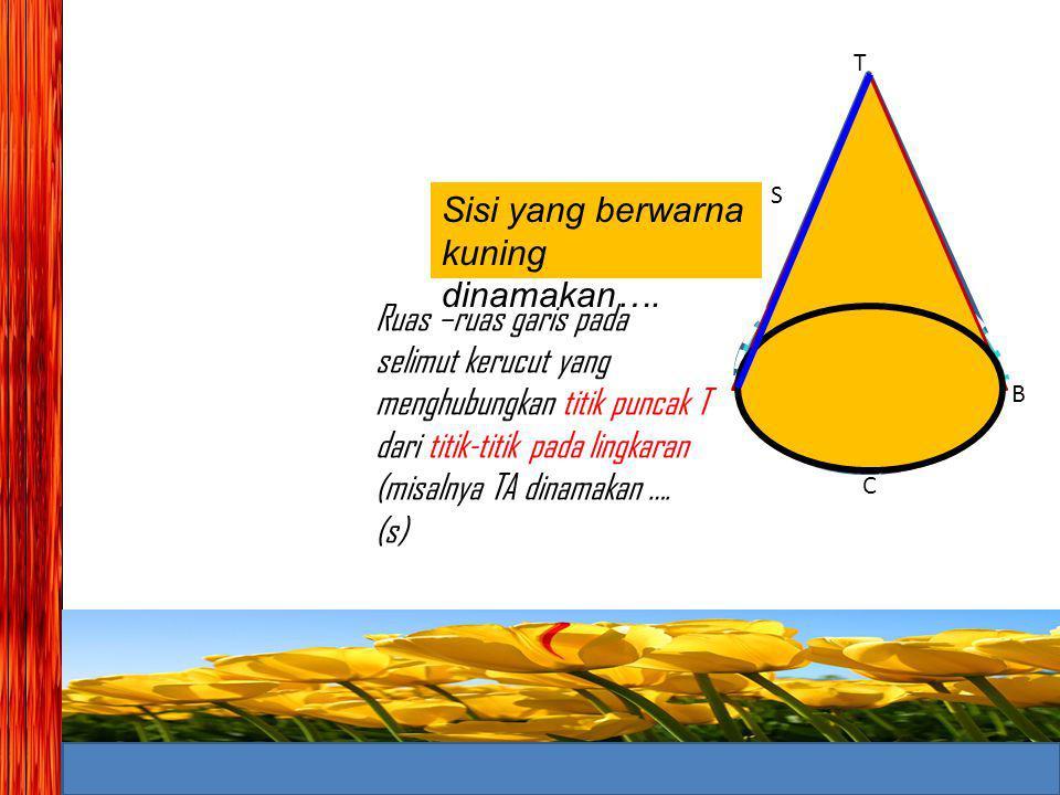 Sisi yang berwarna kuning dinamakan….