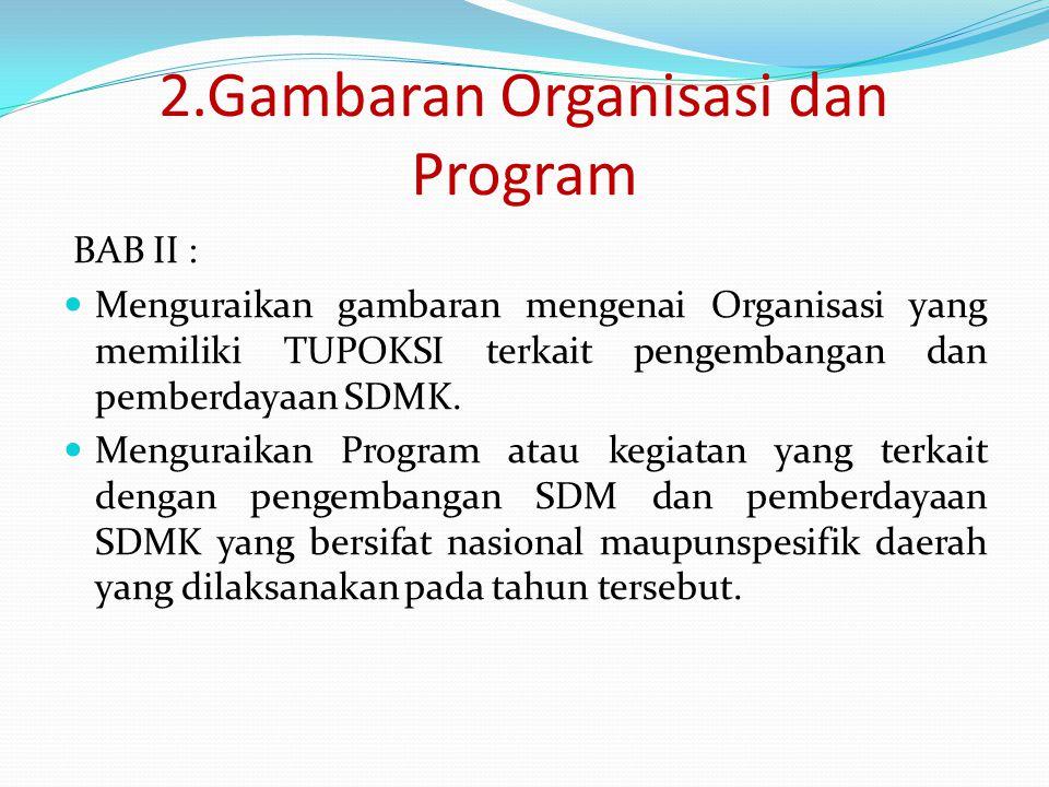2.Gambaran Organisasi dan Program