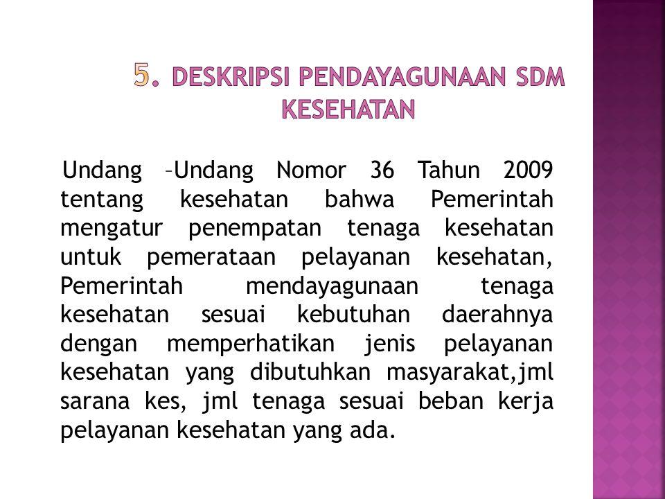 5. Deskripsi Pendayagunaan SDM Kesehatan