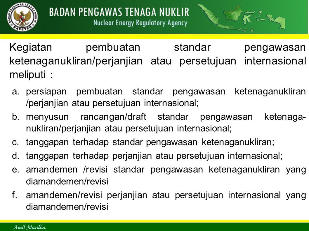 Kegiatan pembuatan standar pengawasan ketenaganukliran/perjanjian atau persetujuan internasional meliputi :