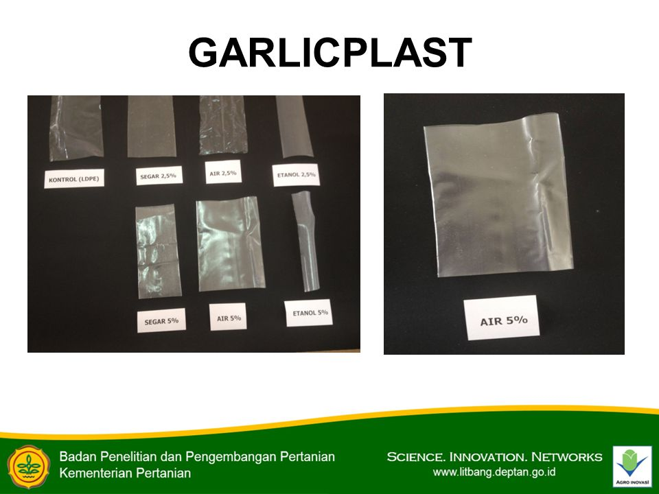 GARLICPLAST