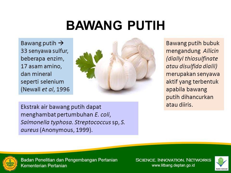 BAWANG PUTIH Bawang putih  33 senyawa sulfur, beberapa enzim, 17 asam amino, dan mineral seperti selenium (Newall et al, 1996.
