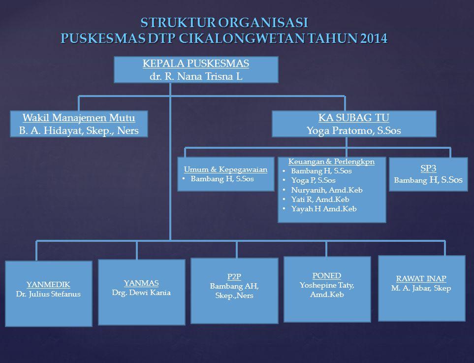 STRUKTUR ORGANISASI PUSKESMAS DTP CIKALONGWETAN TAHUN 2014